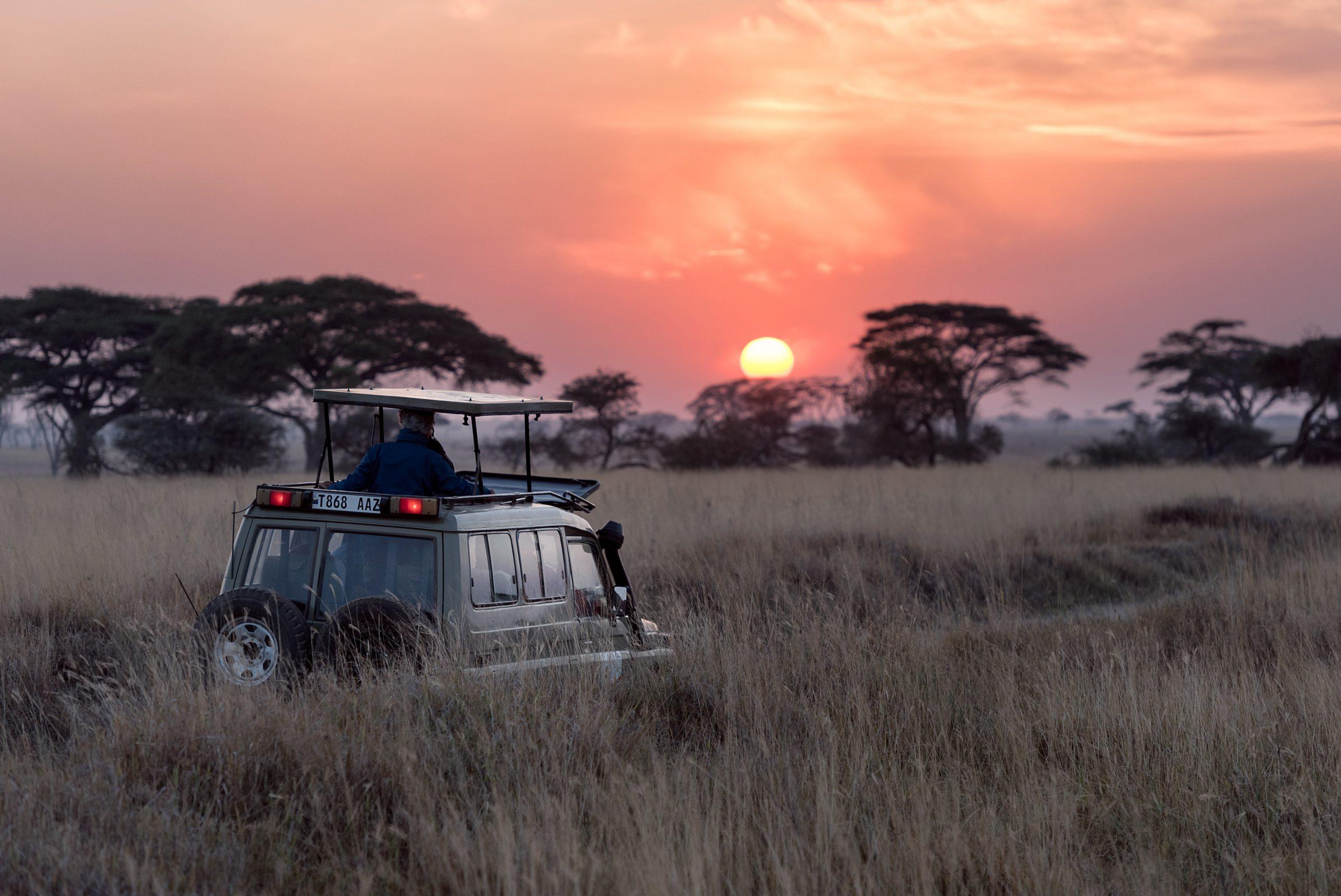 Plan safari in advance